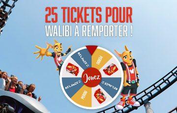 25 tickets pour Walibi Belgium – saison 2017