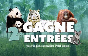 15×2 entrées pour le parc animalier Pairi Daiza à gagner !
